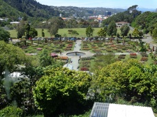 Lady Norwood Rose Garden, Botanic Garden, seen from gardener's cottage