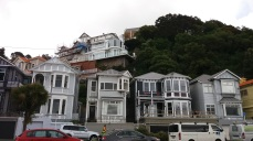 Houses in Oriental Bay