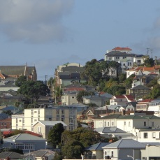 Mt Victoria houses and St Gerard's Monastery