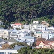 Mt Victoria houses