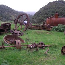 Albion Goldmining Battery remains, Terawhiti Station